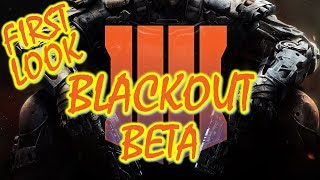 Random Squad Win! Call of Duty Blackout Beta! (Call of Duty Black Ops 4)