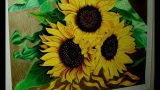 Drawing sunflowers | Dibujando Girasoles