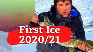 Perch Pike and Bluegill kick off amazing first ice video underwater camera New years 2021