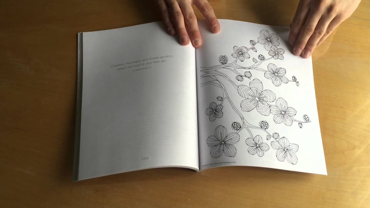 Creative Coloring Flowers By Valentina Harper   Overview Of ALL Pages.