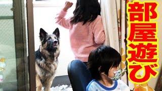 ジャーマンシェパード犬・マック君・秋田犬・そうすけ君 小雪降る休日ま...
