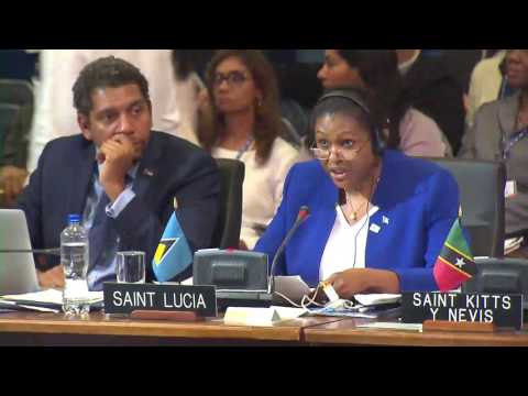 St. Lucia's Foreign Minister at Third Plenary of OAS G.A. in Mexico
