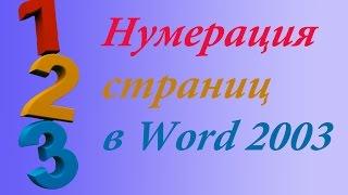 Нумерация страниц в Word 2003