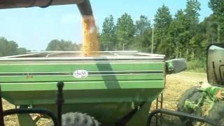 corn harvest 2011 petty farms case ih 2588