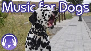 NEW Soothing Reggae Music for Dogs!  - Instantly Chill Your Dog!