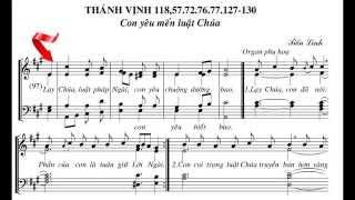 Thánh vinh 118 - Đáp ca Chúa nhật 17 Thường niên năm A