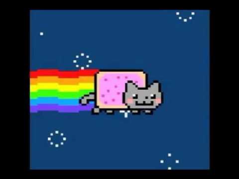 радужный кот (музыка)