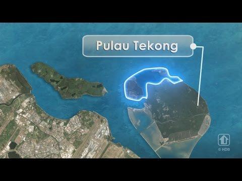 Polder Development at Pulau Tekong