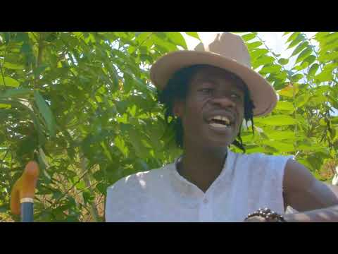 Tocky vibes _Ho Nde Ha(official video)