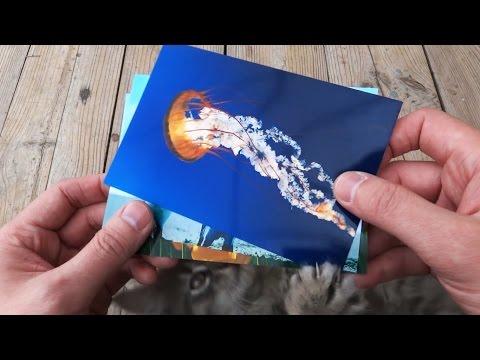 Глянцевая фотобумага для струйного принтера