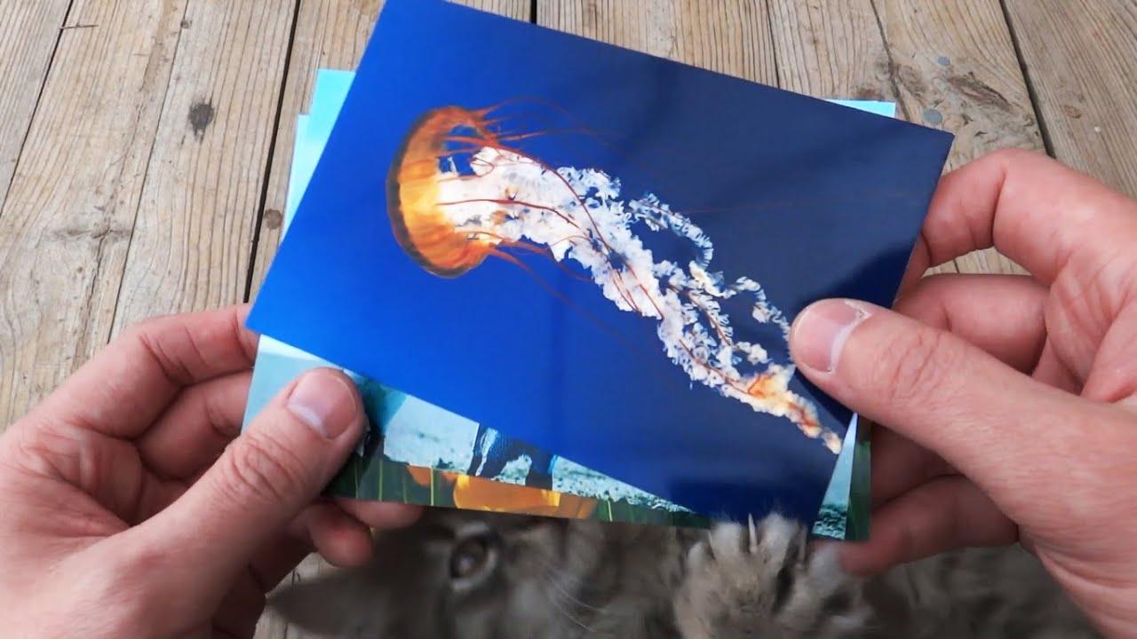 Как делать фото на фотобумаге