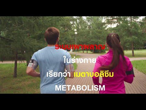 BMR คืออะไร? ทำไมต้องรู้ถ้าลดน้ำหนัก (พร้อมวิธีคำนวณ)