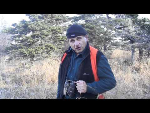 Anticosti  Big Deer Kill