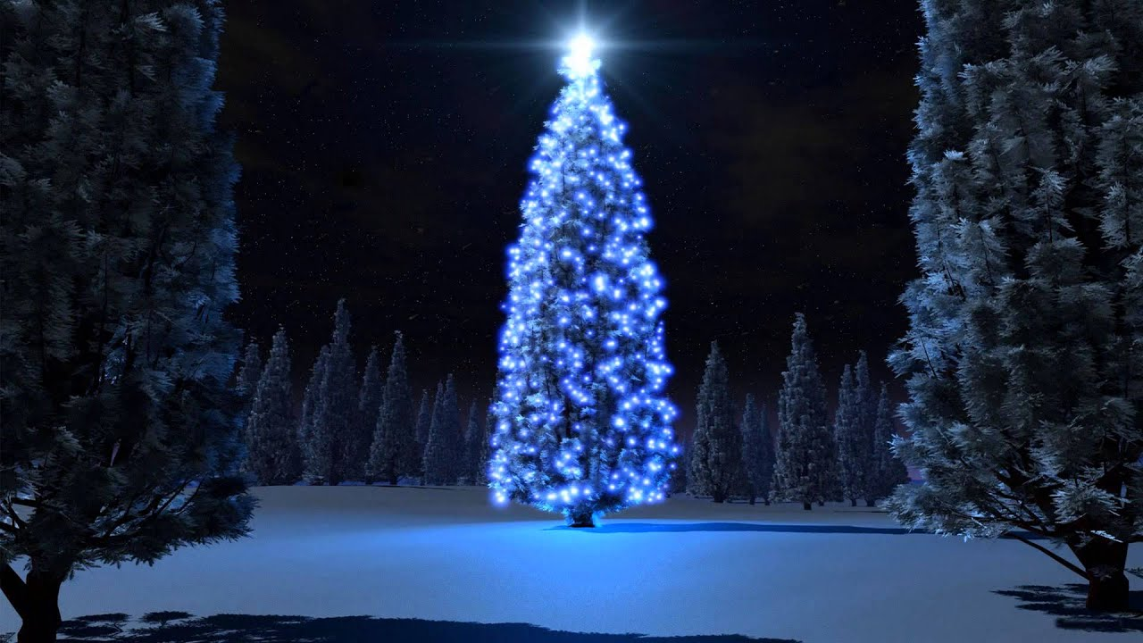 10 Great Christmas Quotes With Christmas Tree.   YouTube