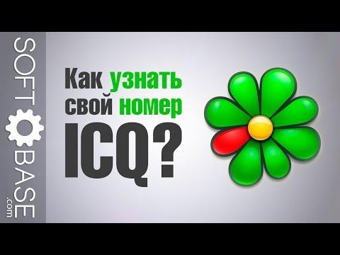 знакомства номера icq