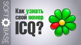 Как узнать свой номер ICQ?(http://softobase.com/ru - бесплатные программы и игры для Windows Android и iOS Упражнение для мозга - вспоминаем свой номер ICQ!, 2015-06-03T09:30:55.000Z)
