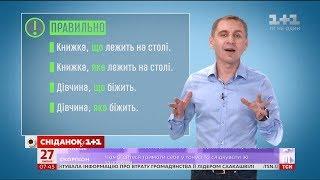 Який та котрий – експрес-урок української мови