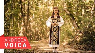 Descarca Andreea Voica - Bagita dragostea mea