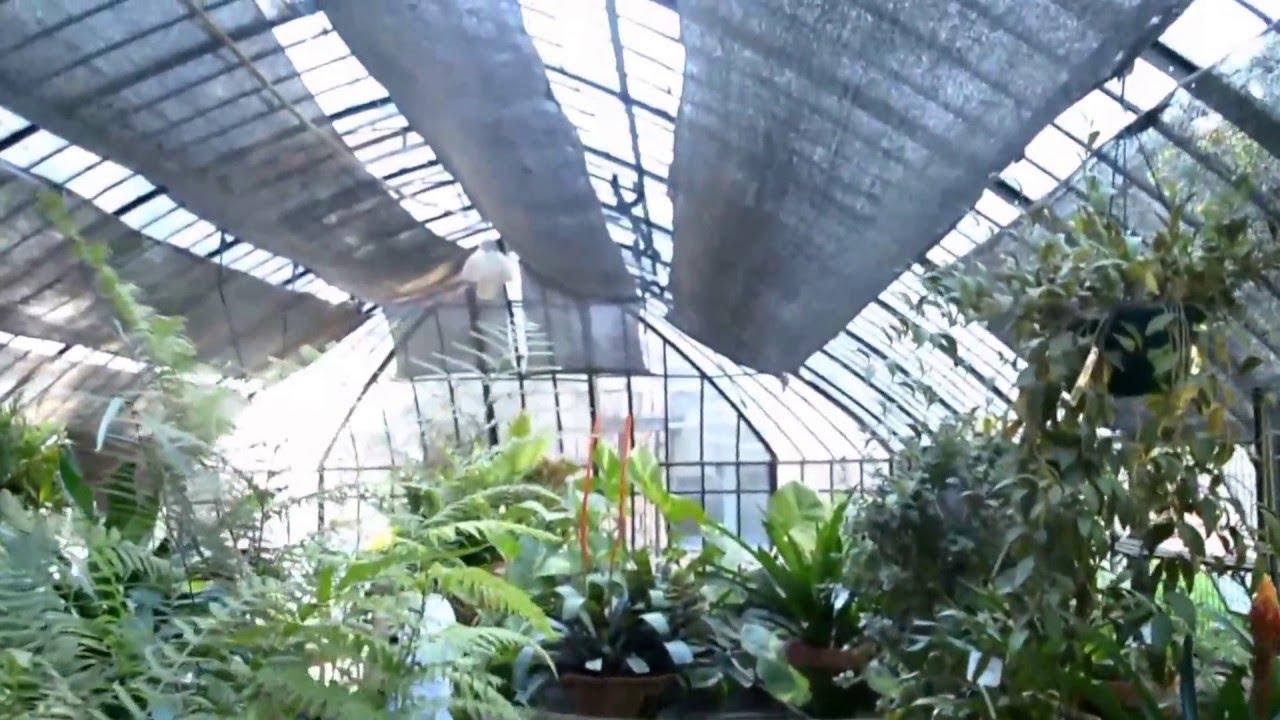 Invernadero en Jardín Botánico (Buenos Aires, Argentina) - YouTube
