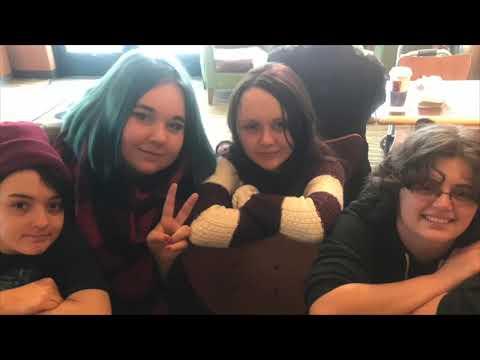 Michigan Great Lakes Virtual Academy's Anti-Bully Presentation