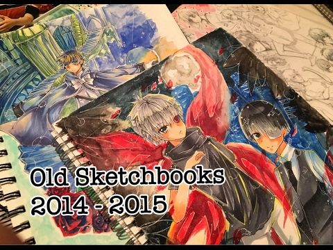 Anime/Manga Sketchbooks Tour - 2014 to 2015