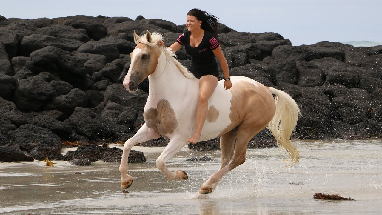 a-lady-refused-to-give-up-on-this-rejected-horse-and-thanks-to-their-bond-she-can-ride-him-bareback