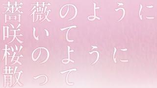松田聖子/薔薇のように咲いて 桜のように散って ドラマ「せいせいする...