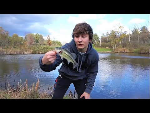 early fall bass fishing bass fishing tips and techniques