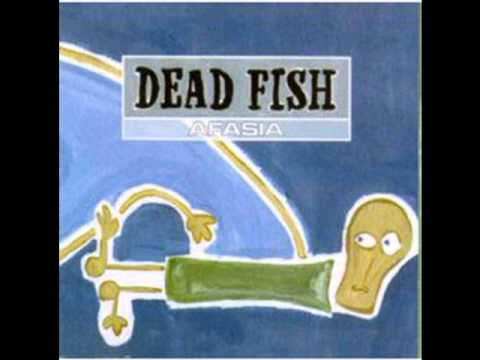 Dead fish iceberg