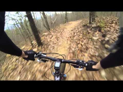 Coldwater Mountain Biking Alabama Talladega Downhill Trail