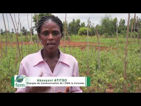 Togo ; Des Initiatives Communautaires qui protègent