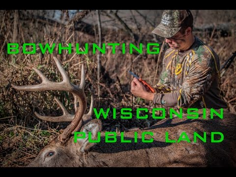 Wisconsin Public Land Rut Hunting