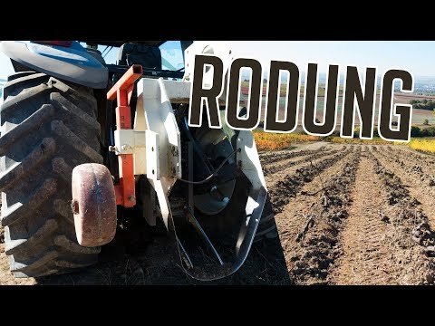 WEINBERG RODEN | RODUNG 2018 | Weinbau | New Holland | Vineyard Removal