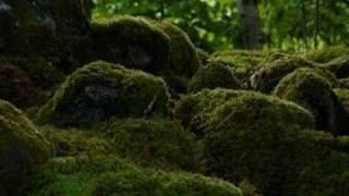 Landscapes from Denmark and Sweden