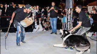 وحدة الاحتراف السعودي استعراض كلاب بمعرض تدوير