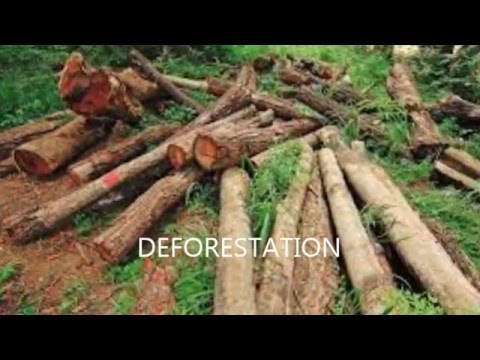 human impact on ecosystems youtube. Black Bedroom Furniture Sets. Home Design Ideas