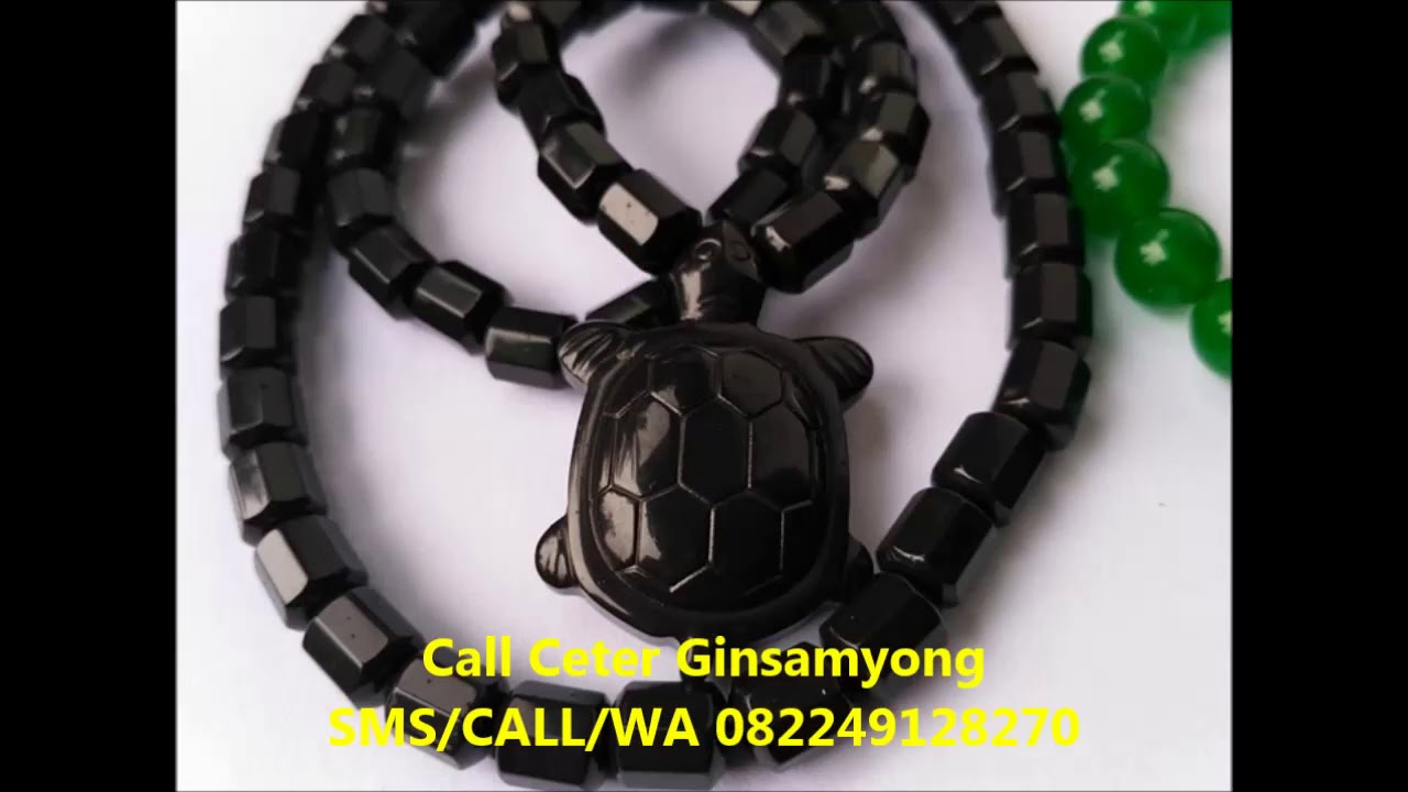 Kalung Ginsamyong Tv One Sms Call Wa 082211408317 Youtube Kesehatan