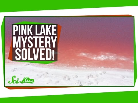 Pink Lake Mystery Solved