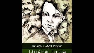 Info Rádió Könyvpercek: Kosztolányi Dezső: Látjátok, feleim (Tarandus Kiadó) Thumbnail