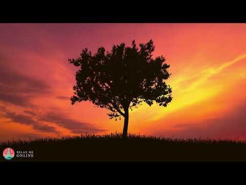 Angelic Meditation  Fall Asleep Fast Calming Sleep  Meditation Sleep  134