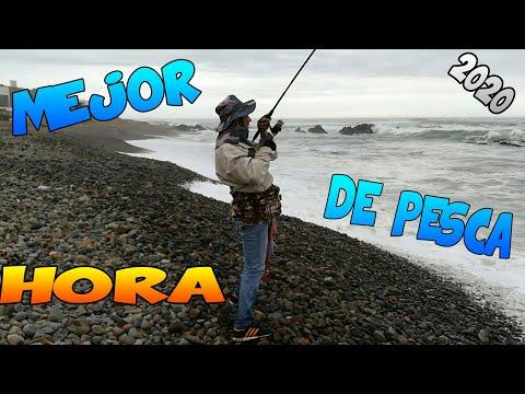 LA MEJOR HORA