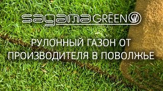 Рулонный газон от производителя в Поволжье. Sagama Green.(, 2016-06-20T07:54:30.000Z)