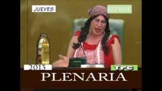 Plenaria de la Tenchis - Roberto d