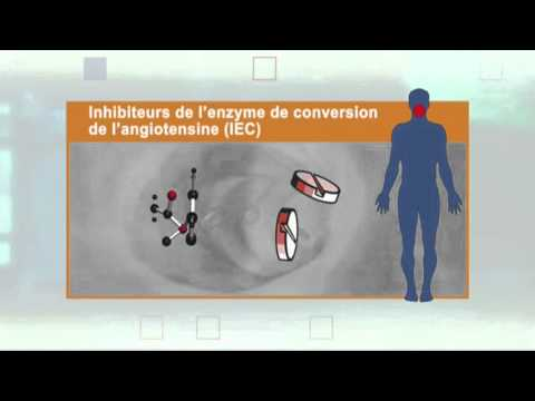 Les inhibiteurs de l'enzyme de conversion de l'angiotensine (IEC)
