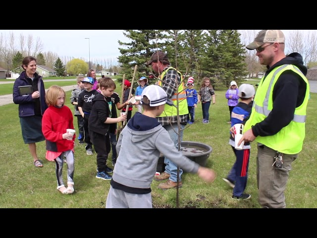 Tree planting at Challenger