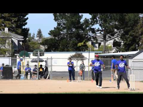 Cupertino Cougars vs Cricket Swaggers