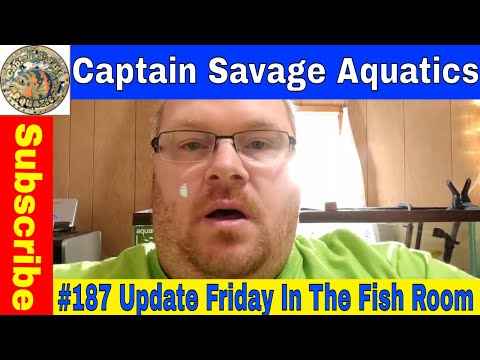 #187 Update Friday: Fish Room Update With Captain Savage Aqu