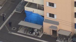 愛媛県今治市の市営住宅で高齢の親子が殺傷された事件で、今治署捜査本部が参考人として事情聴取した近所に住む30代の女性が5日午前9時...