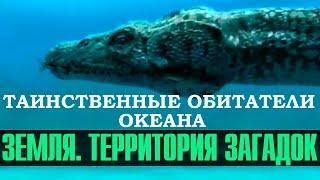 Таинственные обитатели океана — Земля. Территория загадок (документальные фильмы)
