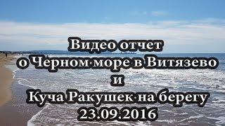 Видео отчет Море после Шторма в Витязево 23.09.2016 -16.00(Попал на море в 15.30 и снял для вас такую красоту, куча ракушек после шторма, чистая вода, в общем наслаждайтес..., 2016-09-23T15:15:02.000Z)